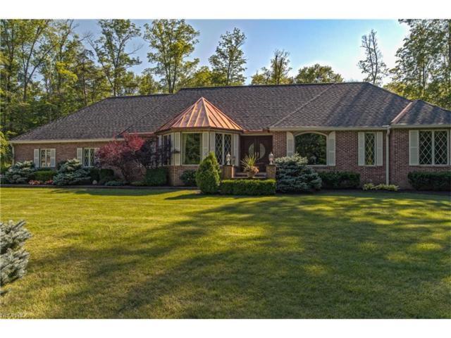 10885 Scranton Woods Trl, Newbury, OH 44065 (MLS #3925308) :: The Crockett Team, Howard Hanna