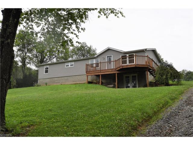 10034 Gavers Rd, Hanoverton, OH 44423 (MLS #3926125) :: RE/MAX Valley Real Estate