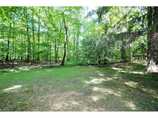 V/L Pine River Rd, Bentleyville, OH 44022 (MLS #3927152) :: RE/MAX Edge Realty