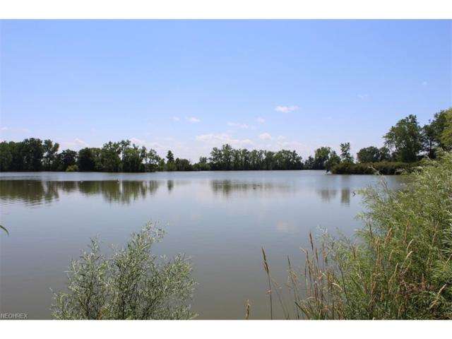 County Road 109, Fremont, OH 43420 (MLS #3927624) :: Keller Williams Chervenic Realty