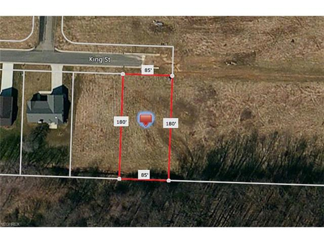 King St, Minerva, OH 44657 (MLS #3927646) :: Tammy Grogan and Associates at Cutler Real Estate