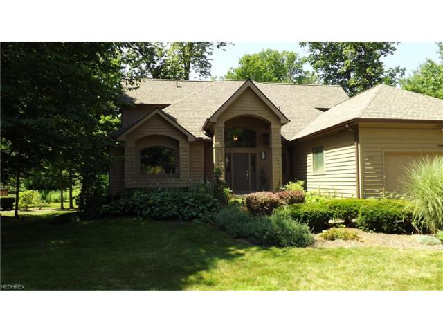 248 Twin Creeks Dr, Chagrin Falls, OH 44023 (MLS #3928249) :: RE/MAX Valley Real Estate