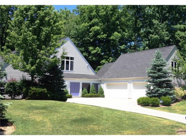 359 Rainbows End, Aurora, OH 44202 (MLS #3928583) :: RE/MAX Trends Realty