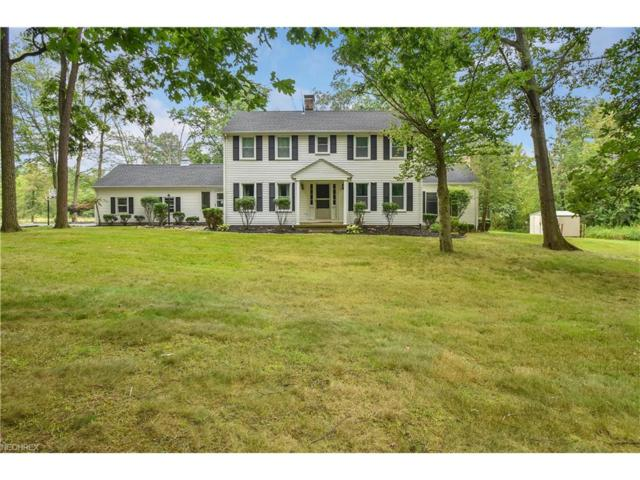 6940 Knauf Rd, Canfield, OH 44406 (MLS #3931378) :: RE/MAX Valley Real Estate