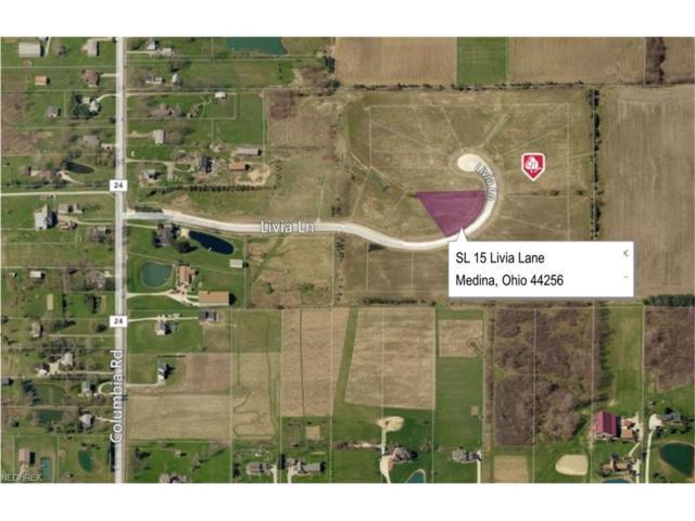 SL 15 Livia Ln, Medina, OH 44256 (MLS #3931823) :: Tammy Grogan and Associates at Cutler Real Estate