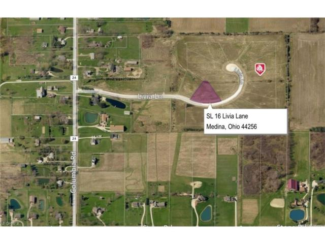 SL 16 Livia Ln, Medina, OH 44256 (MLS #3931828) :: Tammy Grogan and Associates at Cutler Real Estate