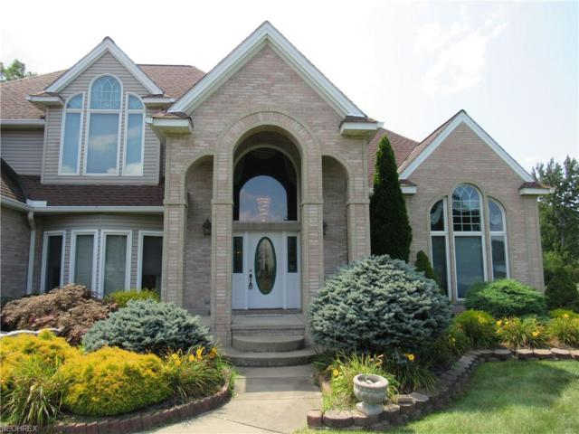 7228 Murray Ridge Rd, Elyria, OH 44035 (MLS #3931899) :: The Crockett Team, Howard Hanna