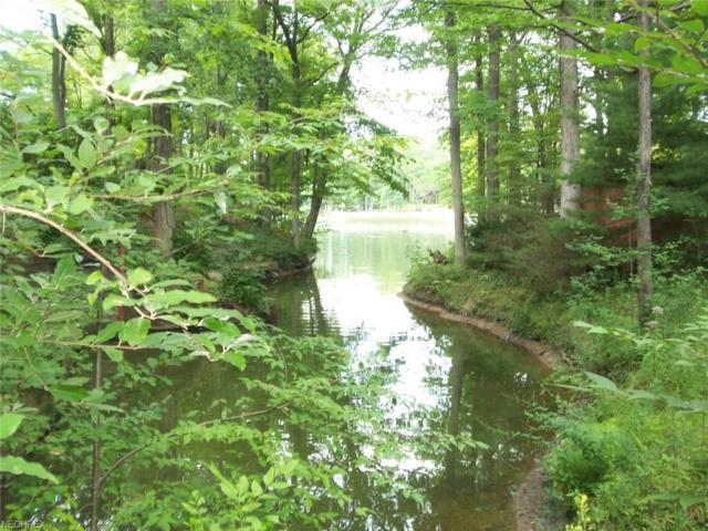 2293 Morning Pt, Roaming Shores, OH 44084 (MLS #3932035) :: Tammy Grogan and Associates at Cutler Real Estate