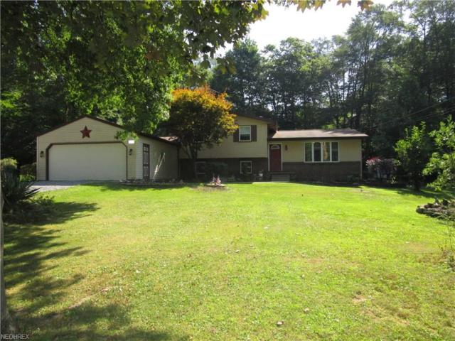 1950 Woodland Dr, Columbiana, OH 44408 (MLS #3932453) :: RE/MAX Valley Real Estate