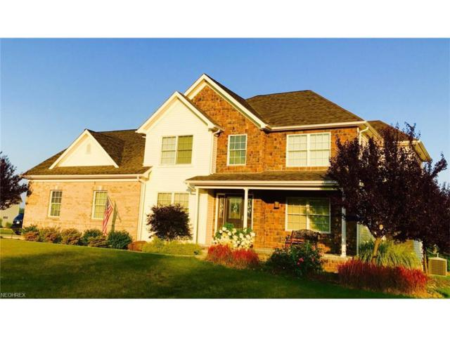 4374 Bella Jean, Canfield, OH 44406 (MLS #3932735) :: RE/MAX Valley Real Estate