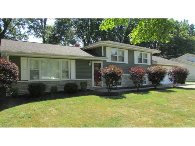 3503 Orchard Hill Dr, Canfield, OH 44406 (MLS #3932764) :: RE/MAX Valley Real Estate