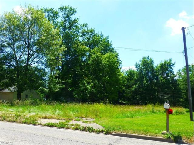 2790 S Meridian Rd, Youngstown, OH 44511 (MLS #3932938) :: The Crockett Team, Howard Hanna
