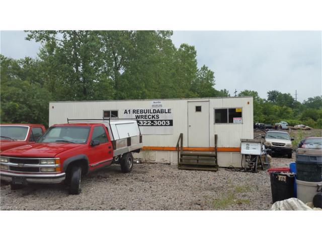 760 Infirmary Rd, Elyria, OH 44035 (MLS #3933542) :: PERNUS & DRENIK Team