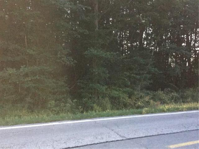 Paine Road, Leroy, OH 44077 (MLS #3936716) :: The Crockett Team, Howard Hanna