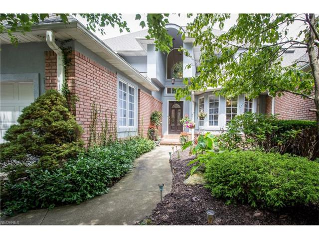 151 Bayview Ter, Akron, OH 44319 (MLS #3937890) :: RE/MAX Trends Realty