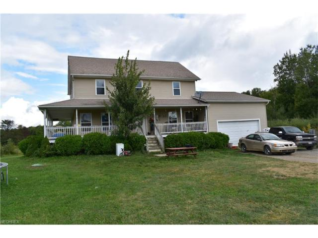 6349 Gibbs Rd, Andover, OH 44003 (MLS #3939240) :: Tammy Grogan and Associates at Cutler Real Estate