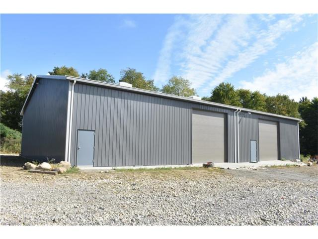 5628 State Route 7, Andover, OH 44003 (MLS #3939297) :: Tammy Grogan and Associates at Cutler Real Estate