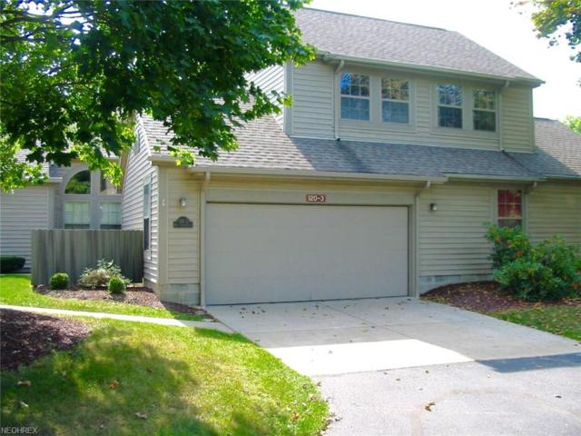 120 N Aspen Ct #3, Howland, OH 44484 (MLS #3940230) :: RE/MAX Valley Real Estate