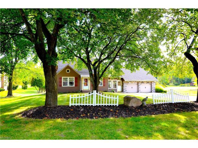 5305 Brainard Rd, Solon, OH 44139 (MLS #3942652) :: The Crockett Team, Howard Hanna