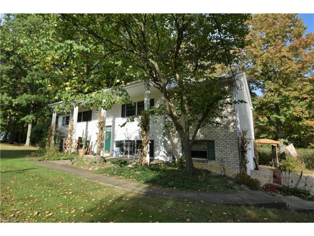 6644 Leffingwell Rd, Canfield, OH 44406 (MLS #3943290) :: RE/MAX Valley Real Estate