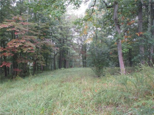 Campbell Rd, Other, WV 26170 (MLS #3943313) :: Tammy Grogan and Associates at Cutler Real Estate