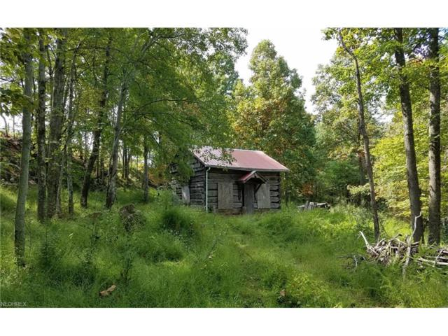 0 Campbell Rd, Other, WV 26170 (MLS #3943317) :: Tammy Grogan and Associates at Cutler Real Estate