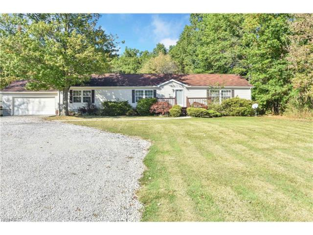 610 Yerke Young Rd, Mineral Ridge, OH 44440 (MLS #3943953) :: Keller Williams Chervenic Realty