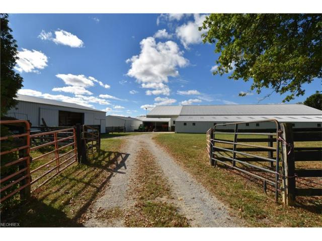 10510 Angling Rd, Wakeman, OH 44889 (MLS #3944750) :: Tammy Grogan and Associates at Cutler Real Estate