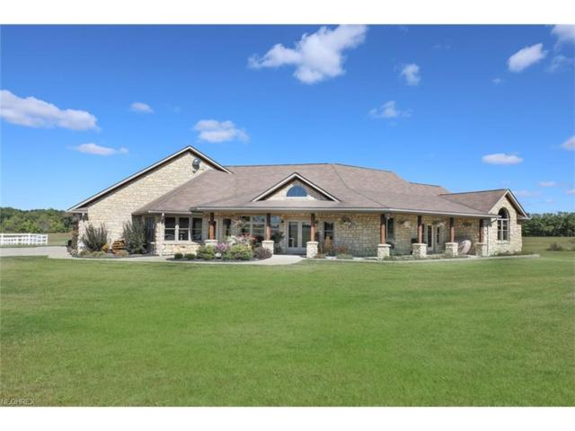 9640 Akron Canfield Rd, Canfield, OH 44406 (MLS #3945158) :: RE/MAX Valley Real Estate