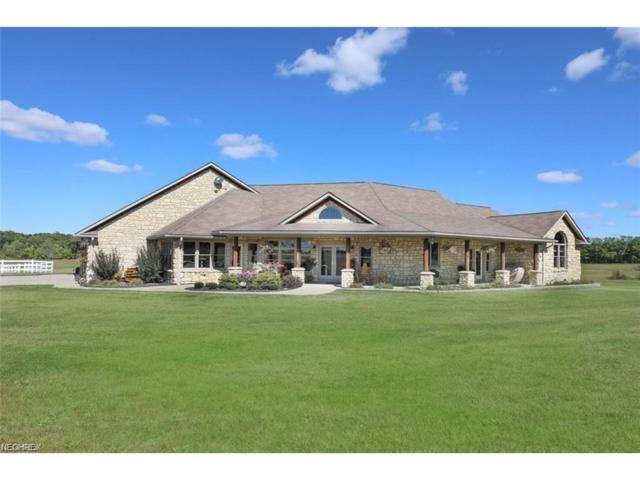 9670 Akron Canfield Rd, Canfield, OH 44406 (MLS #3945239) :: RE/MAX Valley Real Estate