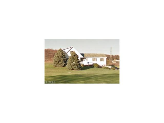 5203 Streeter Rd, Mantua, OH 44255 (MLS #3945753) :: Tammy Grogan and Associates at Cutler Real Estate