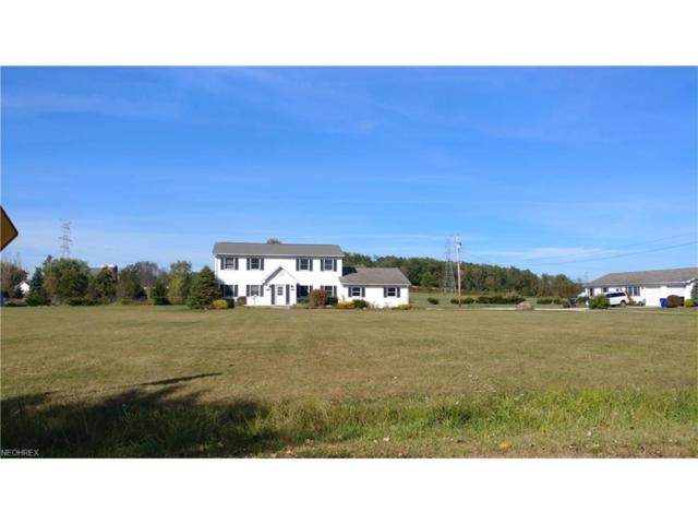 5101 Streeter Rd, Mantua, OH 44255 (MLS #3945792) :: Tammy Grogan and Associates at Cutler Real Estate