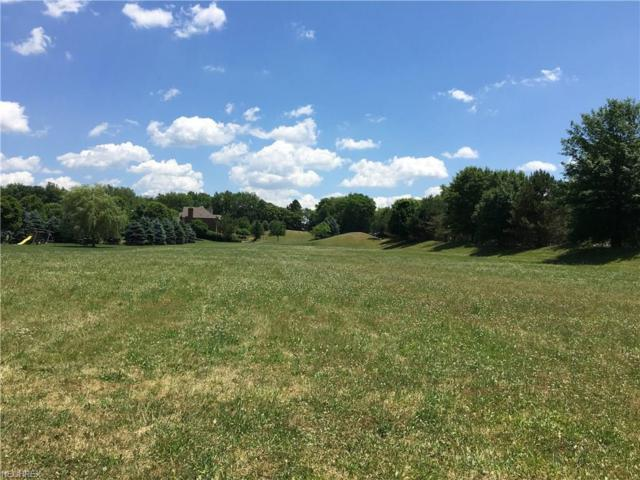 Meadowlands Ave NW, North Canton, OH 44720 (MLS #3946468) :: Keller Williams Chervenic Realty
