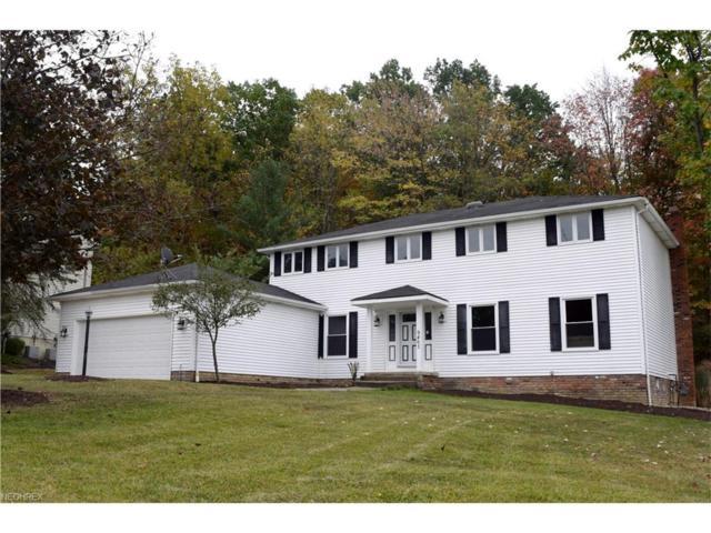 9463 Chesapeake Dr, North Royalton, OH 44133 (MLS #3946579) :: RE/MAX Edge Realty