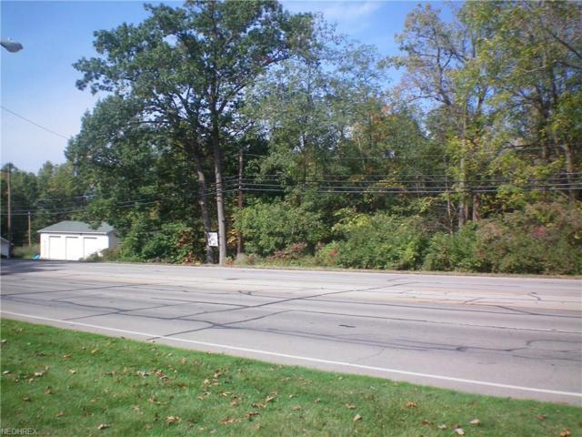 Liberty Ave, Vermilion, OH 44089 (MLS #3947884) :: The Crockett Team, Howard Hanna