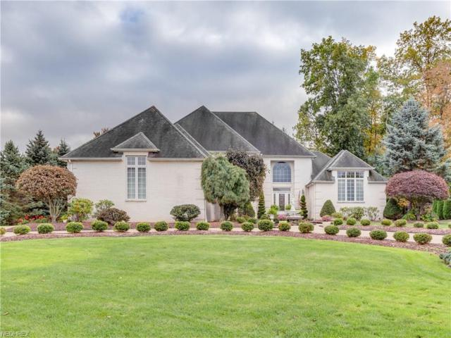 1311 Meadowood Cir, Poland, OH 44514 (MLS #3947909) :: The Crockett Team, Howard Hanna
