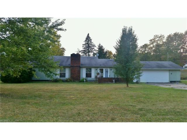 8104 Meadowrun, Garrettsville, OH 44231 (MLS #3948026) :: Tammy Grogan and Associates at Cutler Real Estate