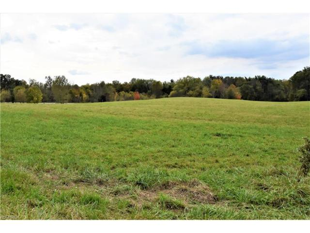 7947 Price Rd, Streetsboro, OH 44241 (MLS #3948078) :: Tammy Grogan and Associates at Cutler Real Estate