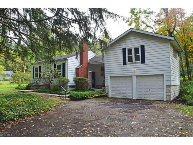2560 Dodd Rd, Willoughby Hills, OH 44094 (MLS #3948692) :: The Crockett Team, Howard Hanna