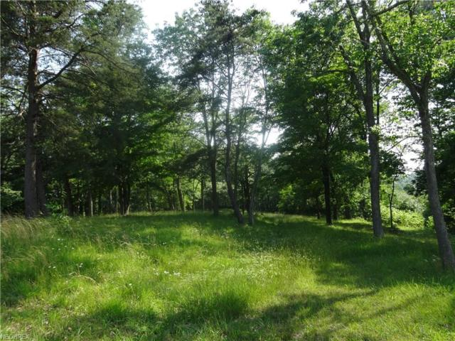 1 Woodlawn Ridge Rd, Washington, WV 26181 (MLS #3948708) :: Keller Williams Chervenic Realty