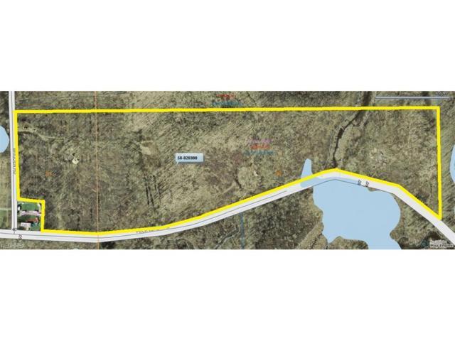 VL Peck Leach Rd, West Farmington, OH 44491 (MLS #3948791) :: The Crockett Team, Howard Hanna