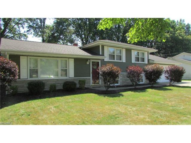 3503 Orchard Hill Dr, Canfield, OH 44406 (MLS #3948886) :: RE/MAX Valley Real Estate