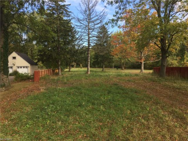 27274 Cook Rd, Olmsted Township, OH 44138 (MLS #3949071) :: The Crockett Team, Howard Hanna