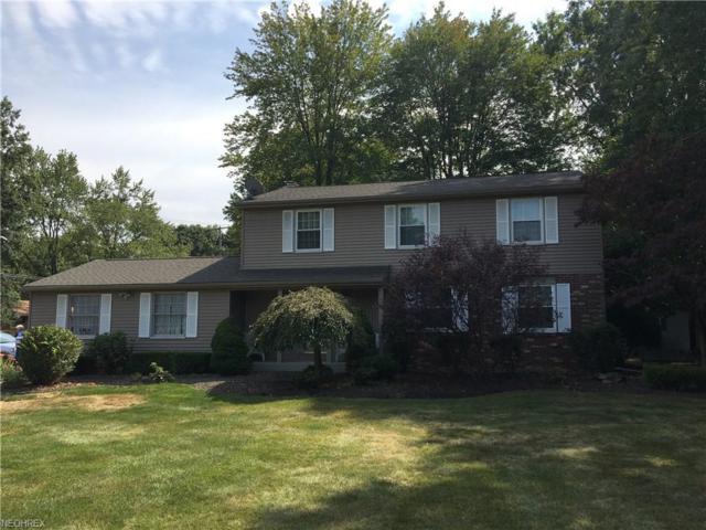 3644 E Market St, Warren, OH 44484 (MLS #3949097) :: RE/MAX Valley Real Estate