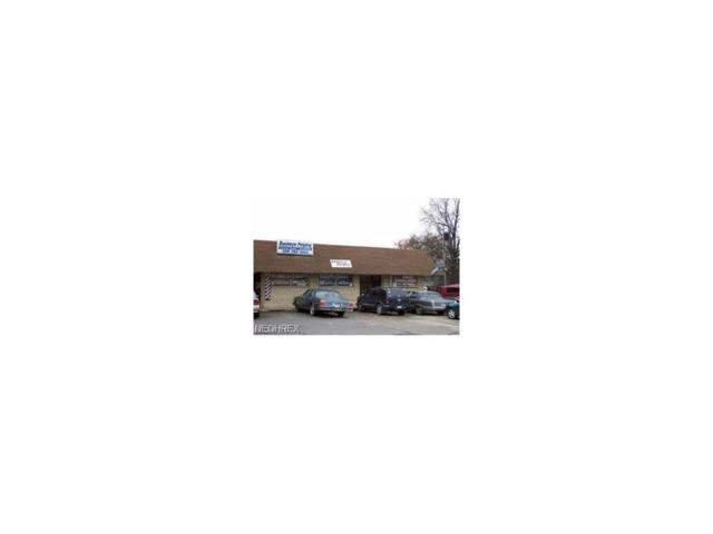 3600 Southern Blvd, Youngstown, OH 44507 (MLS #3949724) :: RE/MAX Valley Real Estate