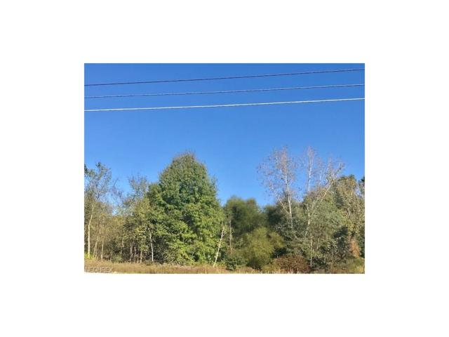 W Western Reserve Rd, Canfield, OH 44406 (MLS #3949826) :: RE/MAX Valley Real Estate