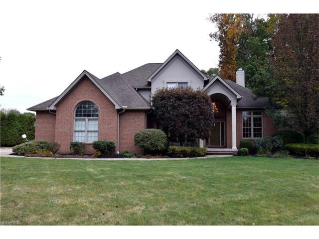 101 Spyglass Ct, Warren, OH 44484 (MLS #3949872) :: RE/MAX Valley Real Estate