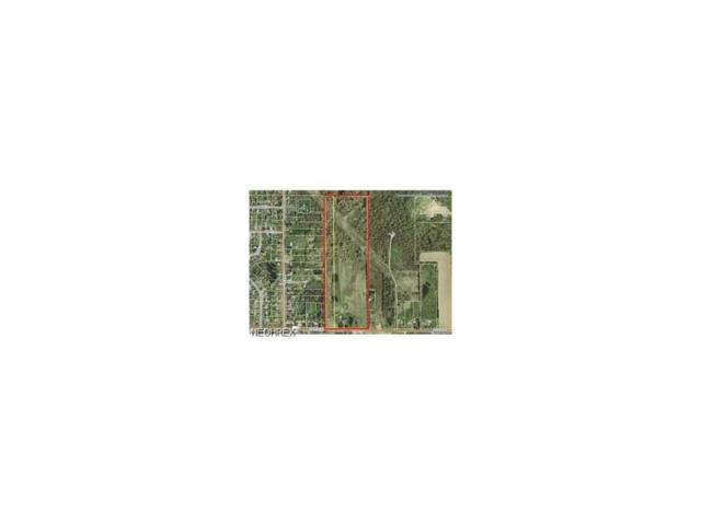 1993 State Route 303, Streetsboro, OH 44241 (MLS #3950108) :: Tammy Grogan and Associates at Cutler Real Estate