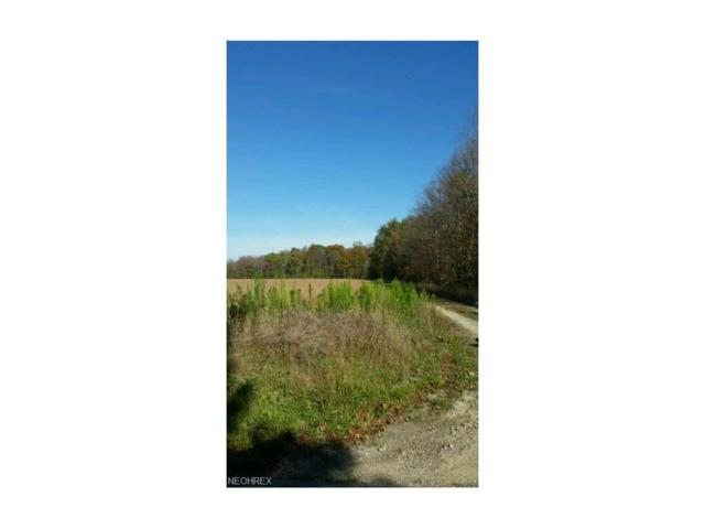 7399 Smalley Rd, Windham, OH 44288 (MLS #3950242) :: Keller Williams Chervenic Realty