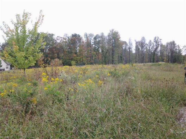 Leffingwell Rd, Berlin Center, OH 44401 (MLS #3950743) :: RE/MAX Edge Realty